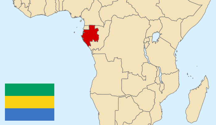 Ancienne colonie française, le Gabon n'avait jamais pénalisé l'homosexualité avant 2019.